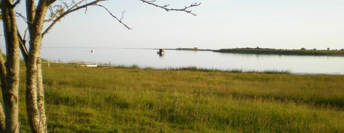 SAAREMAA, UNNAMED ROAD, ROOPA SADAM VALLIPÖLLU