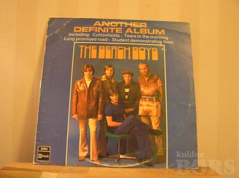 "THE BEACH BOYS ""ANOTHER DEFINITE ALBUM"""