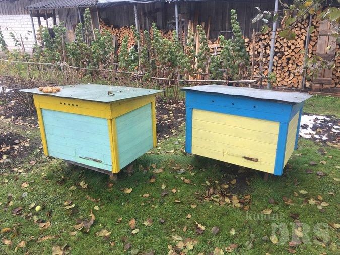 mesilastarude müük