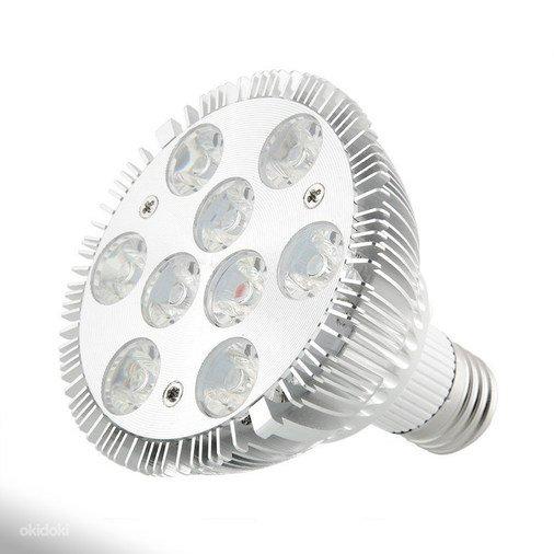 246578f5cb0 9X3 LED 27W 220V E27 TAIMELAMP, müük, kuulutus 72229502 - Kuldne Börs